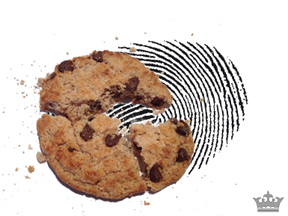 le fingerprinting remplace le cookie