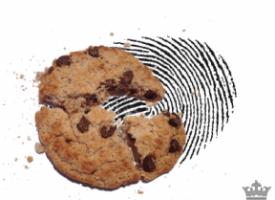 Les cookies sont morts, vive le fingerprinting !